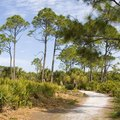 Hotels Near Pine Island, Florida