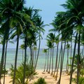 All-Inclusive Punta Cana Resorts