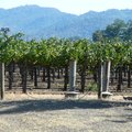 Luxury Hotels in California Wine Country
