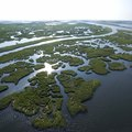 Louisiana List of Natural Resources
