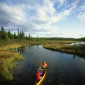 What Are Ontario's Five Largest Provincial Parks?
