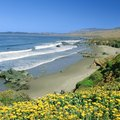 Beaches Near Cayucos, California