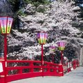 Good Places to Visit in Early March in Japan