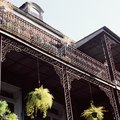 How to Rate Hotels in the French Quarter