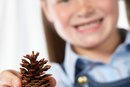How to Make Home Decorations From Pinecones
