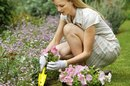 How to Convert a Lawn Into a Flower Bed