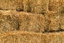 How to Plant With Straw Bales