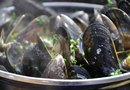 Can I Eat Mussels While Pregnant