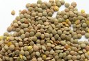 Are Lentils Good for Losing Weight