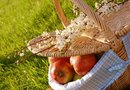 Healthy & Easy Ideas for a Romantic Fall Picnic