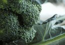 The Calcium in Broccoli & Dark Leafy Veggies