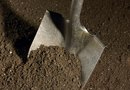 How to Break Up Dirt Clods Without a Tiller
