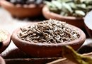 Digestive Benefits of Cumin Seed