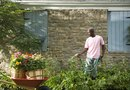 How to Reduce Water Alkalinity for Gardening