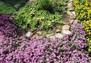 How to Use River Rock in Plant Beds