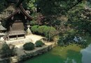 How Does a Japanese Zen Garden Show Order & Harmony?