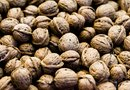 How to Take Care of Walnut Trees