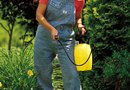 How to Pump a Garden Pressure Sprayer