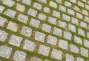 How to Kill Moss on Sidewalk