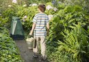 Can Water Runoff From Compost Harm Vegetable Plants?