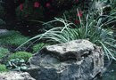 Types of Landscaping Flower Bed Rocks