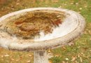 How to Resurface a Cement Bird Bath