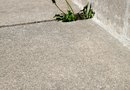 How to Kill Weeds in Sidewalks