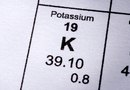What Does Potassium Do for Grass?