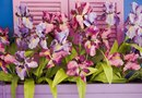 How to Grow Orchids in Wooden Baskets