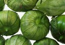 How to Take Care of Tomatillos