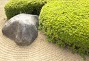 How to Design a Japanese Landscape