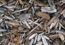 How to Use Wood Chips in Landscapes