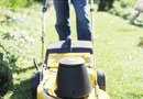 How to Mow Lawns in Dry Weather Conditions