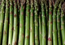 How to Grow Asparagus From Rootstock
