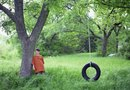 What Size Tree Limb Is Good for Hanging a Tire Swing?