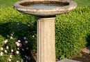 The Best Way to Clean an Outdoor Birdbath