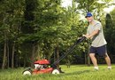How to Mow Grass That Is Too Long