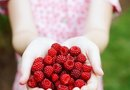 How to Stake Raspberries