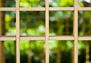 How to Create a Trellis for Vines