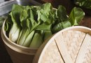 When to Harvest Bok Choy