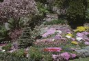 How to Make a Rock Garden on a Sunny Slope