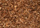 How to Install Mulch Around a House
