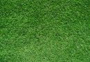 How to Self Install Artificial Grass