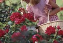 How to Weed Rose Beds