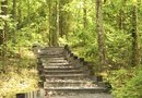 How to Landscape Timber Steps
