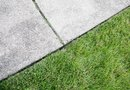 How to Clean a Mildew Stained Sidewalk
