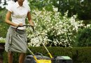 How to Mulch Around Shrubs With Grass Clippings