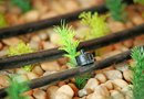Can You Use a Drip Irrigation System for a Lawn Area?