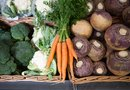 Does the Vegetable Rutabaga Turn into Sugar in Your Body?