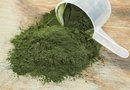 The Disadvantages of Spirulina